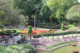 parks-alive-roma-street-parklands