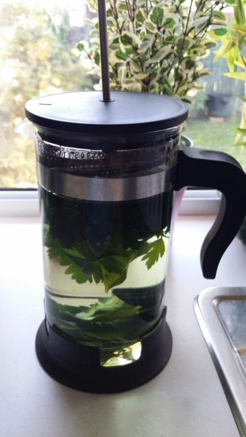 Brewed Parsley