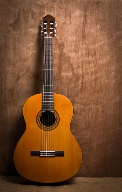 roll-wooden-band-fingerboard-studio_1172-290